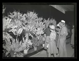 People looking at flower exhibit