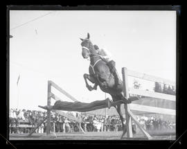 Horse and rider jumping over person lying on fence