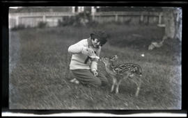 Young girl feeding a fawn