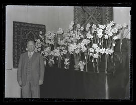 Unidentified man with display of daffodils