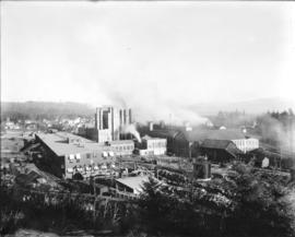 Crown Willamette Mill