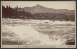 """D163. The Rapids, Upper Cascades, Columbia River Scenery, Oregon."""