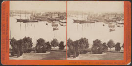 """Panorama of Victoria (B. C.) from Christ Church, (No. 1.)"" (Stereograph 5277)"