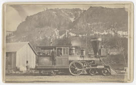 Locomotive D. F. Bradford