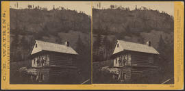 """Residence of John Stephenson, Esq., Columbia River."" (Stereograph 1234)"