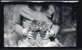 Irene Finley with cougar kittens