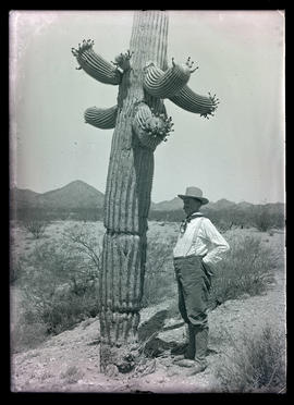 Herbert Brown standing by giant cactus