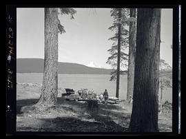 Timothy Lake, people having a picnic