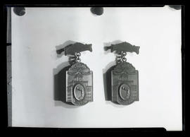 Photograph of two 1930 Marathon Swim medals