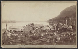 """D145. Warrendale Salmon Fishery, Columbia River scenery, W.T."""