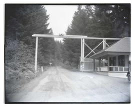 Entrance gate and dirt road in forested area
