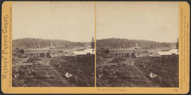"""Oswego Iron Works, Oregon."" (Stereograph 1212)"