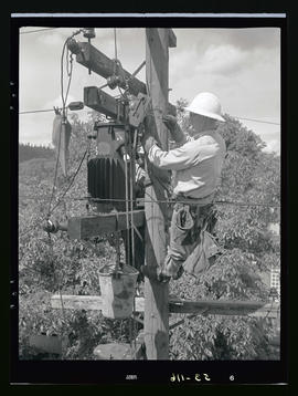 Line Department, lineman on utility pole