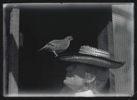 Mrs. Way with a California Quail