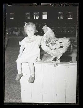 Young girl with chicken