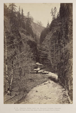 """O.18. Oneonta Gorge from the Railroad Crossing, Cascades."""