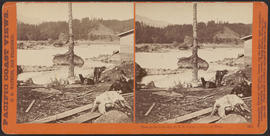 """View on the Columbia, O.R.R. Cascades, Columbia River."" (Stereograph 1301)"
