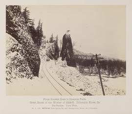 """D.114. From Rooster Rock to Oneonta Falls. The Needles. View West."""