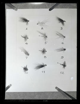 12 fishing flies, arranged on sheet of paper and numbered