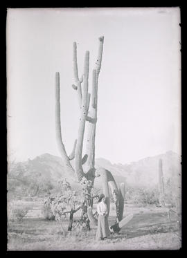 Irene Finley beside a giant cactus