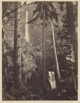 """Multnomah Falls. Columbia River."" (Mammoth 423)"