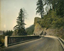 Eagle Creek Viaduct