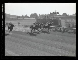 Horse race at Gresham track