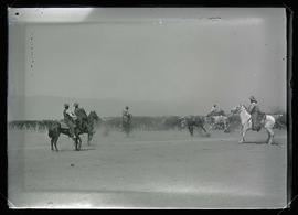 Cowboys Roping Cattle
