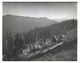 Horseback riders on forested slope
