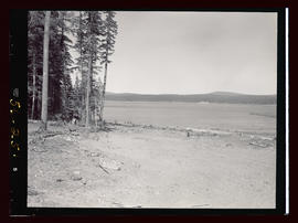 Timothy Lake, early water release