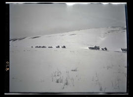 Line of elk crate wagons in the snow