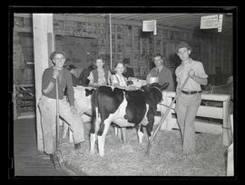 Helen Anderegg, Edna Anderegg, and unidentified men with Holstein calves