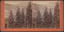 """Castle Peak from Railroad, above Donner Lake. (Stereograph 258)"