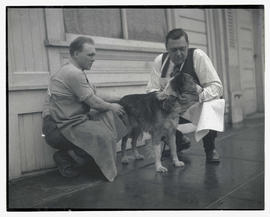 Two men with dog