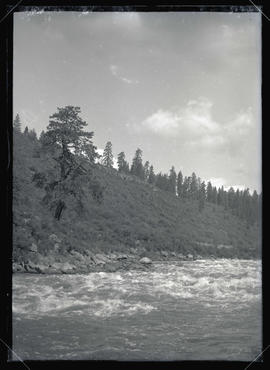 Rapids on the Klamath