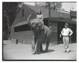 Woman riding elephant at Jantzen Beach Amusement Park, Portland