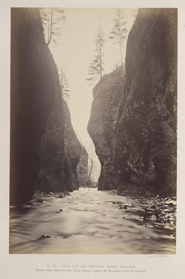 """O.20. View out the Oneonta Gorge, Cascades."""