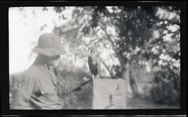 William Finley with a barn owl