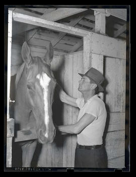 Man in stable with horse