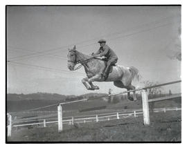 Horse and rider jumping over fence