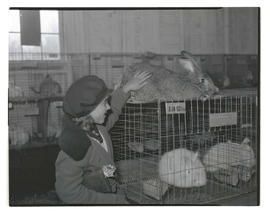 Girl petting rabbit