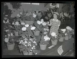 Girl with begonia display