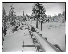 Sledders on toboggan run
