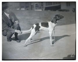 Man with German shorthaired pointer