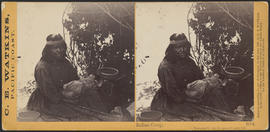 """Indian Camp, Yosemite Valley Mariposa County, Cal."" (Stereograph 1064)"