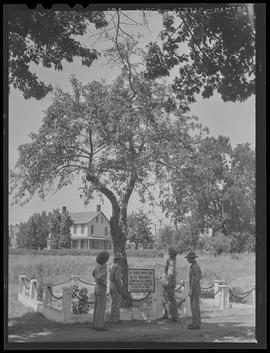 Soldiers with apple tree at Vancouver Barracks