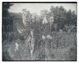 Boy posing with lily plants in garden