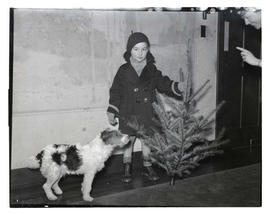 Boy with dog and Christmas tree?