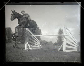 Horse and young rider jumping over fence