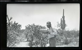 William Finley beside a cholla cactus